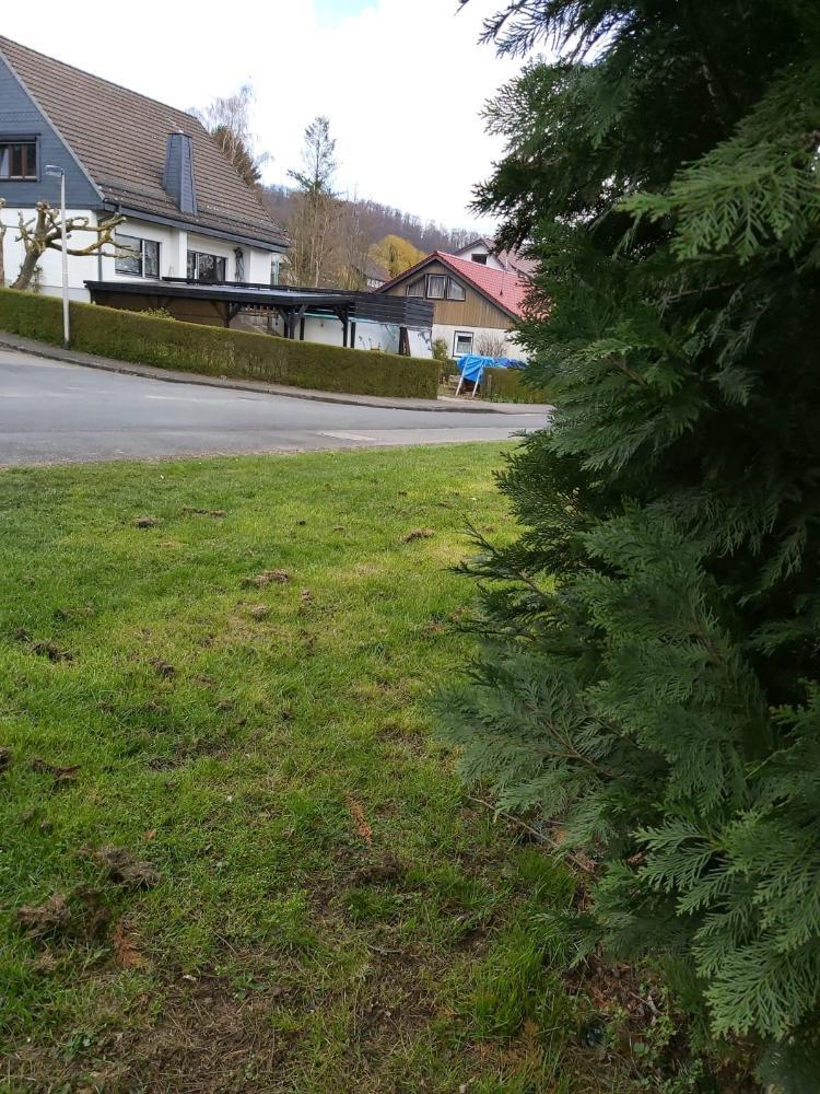 Delligsen, Grundstück