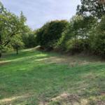Schmalkalden, Grundstück